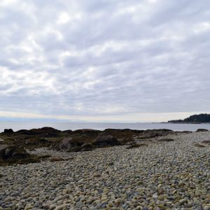 great beach view with stones and grey clouds